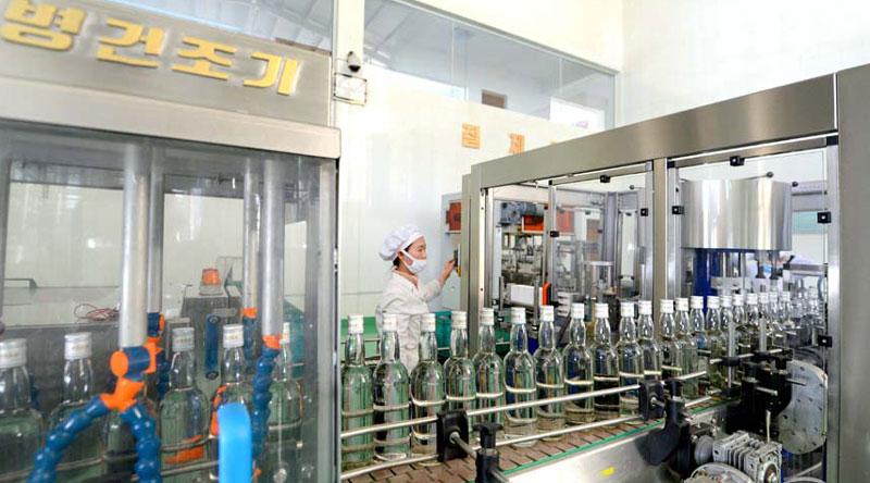 Taedonggang Foodstuff Factory