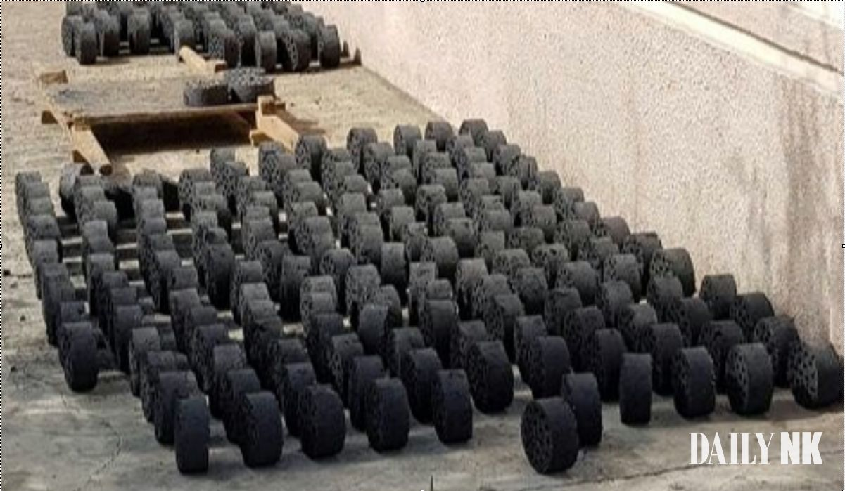 North Korean coal briquettes