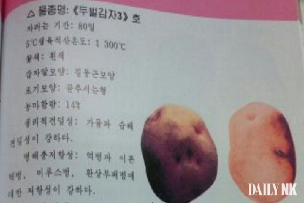 North Korean text showing early cultivated potatoes