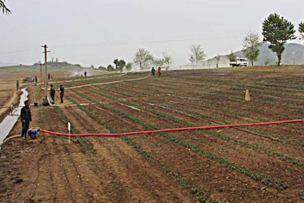 Irrigation on South Hwanghae Province farm