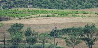North Koreans working in the fields in North Hamgyong Provinc