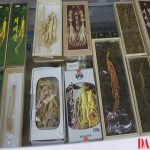 Medicinal plants on offer at a health food store in Pyongyang