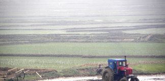 A tractor on a farm in North Korea