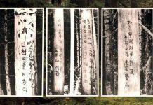Slogan Trees