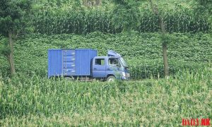 North Korean delivery truck vehicle