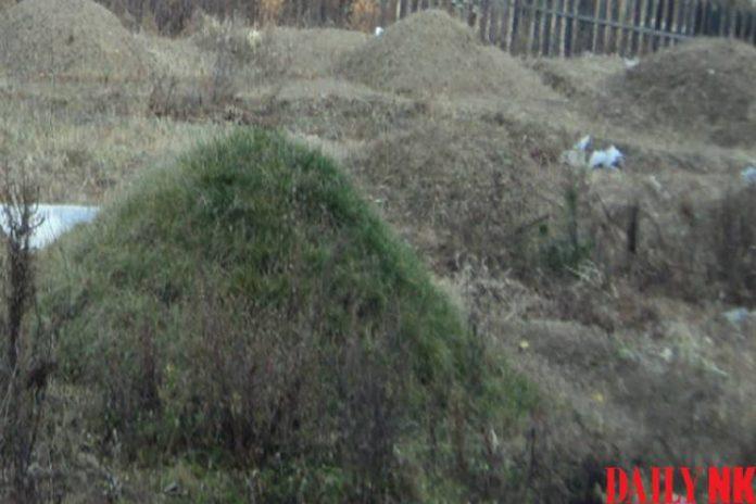 grave site rural area north korea