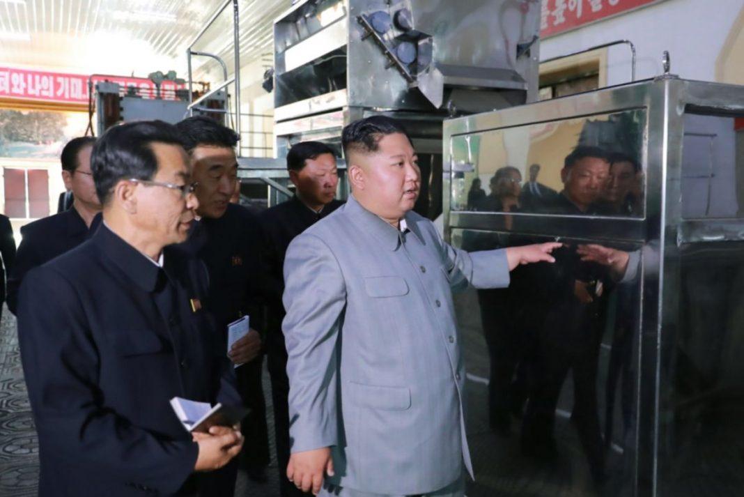 factory kim jong un business