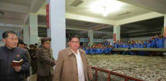 kim jong un fishery station