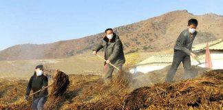 farmers work