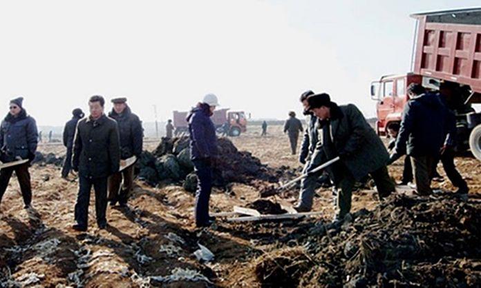 북한 농장