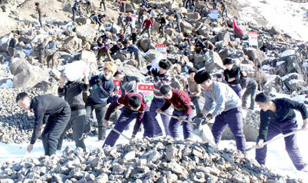 북한 대학생 삼지연꾸리기 건설현장 참여