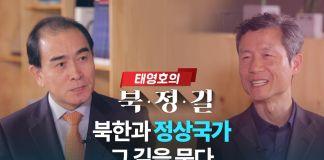 북한정상국가로가는길 김영환 태영호 대담