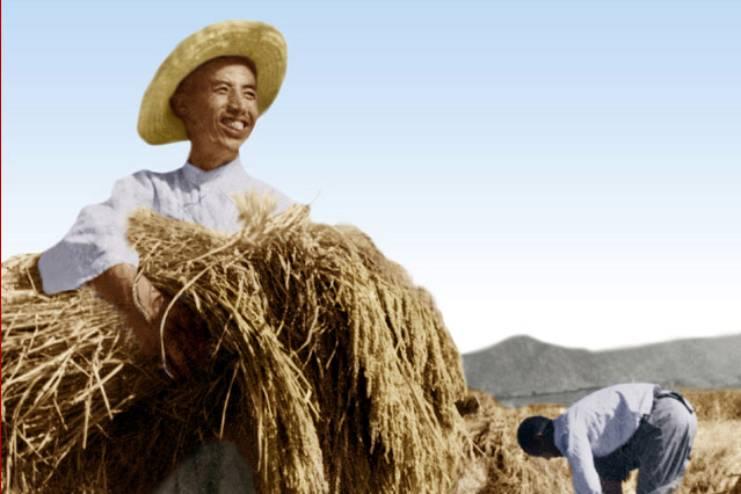 북한 농민
